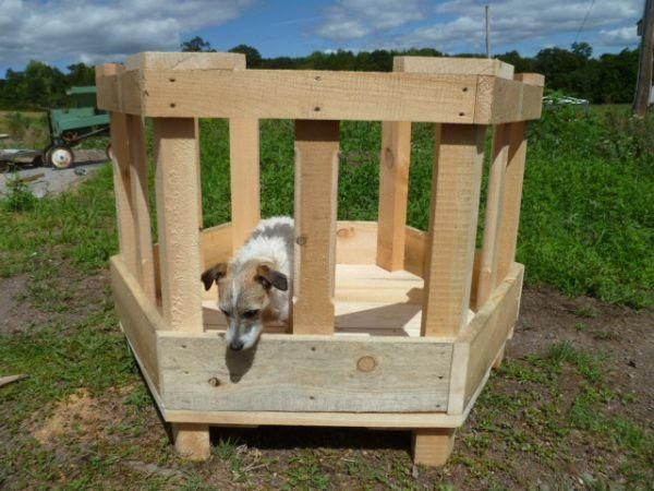 Sheep hay feeder. Looks easy to build and you could use it with square bales