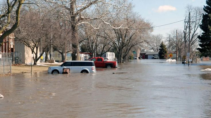 Officials urge to watch out for mold during flood clean up