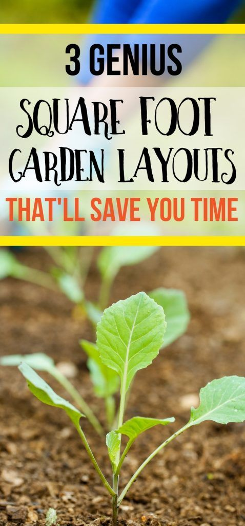 Here's 3 genius square foot gardening layouts that are perfect for raised beds. Square foot gardening for beginners just got easier!