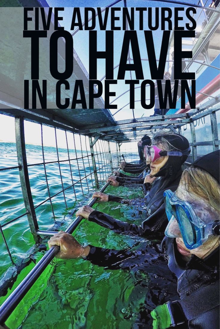 From Shark Cage Diving, to Seal Snorkeling, Abseiling Table Mountain, Canyoneering, to Bungee Jumping off the world's highest bungee bridge. Here are the top adventures to have in Cape Town!