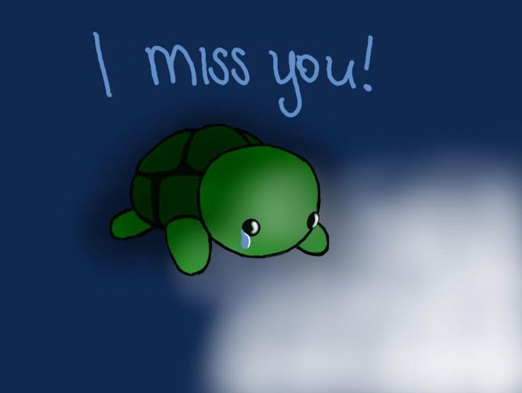 SAD TURTLES | Sad Turt...