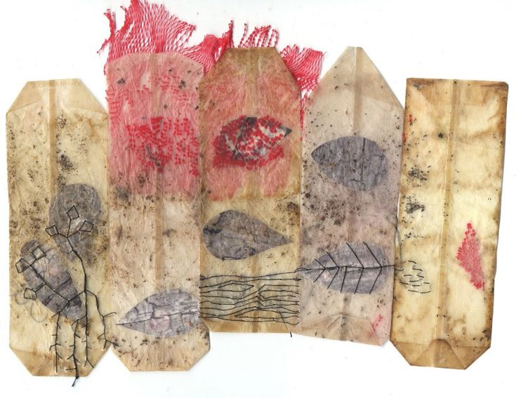 ines seidel tea bags containing the secrets of a dead tree