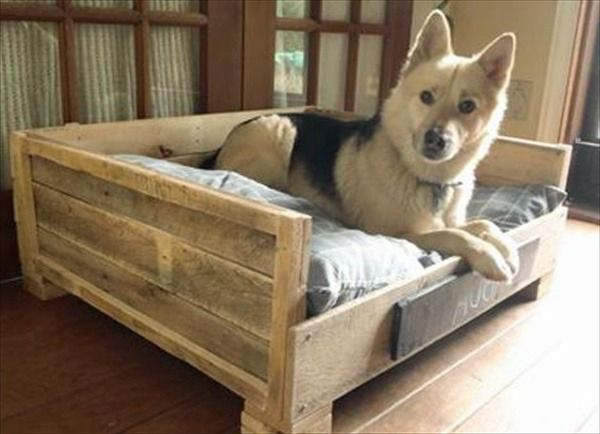 Diy Large Dog Bed