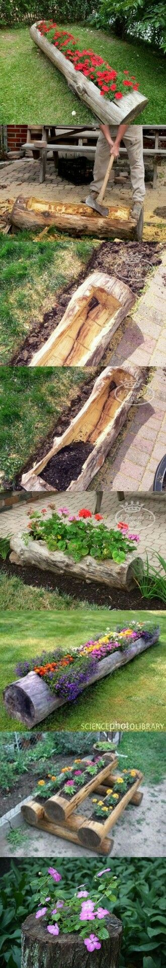 Boomstronk als plantenbak