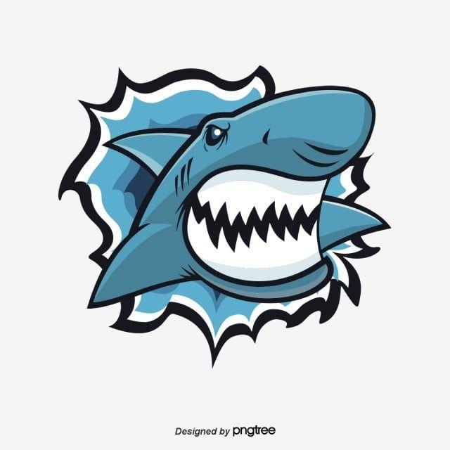Big White Shark Tooth Sharp Illustration Big White Shark Shark Vector Illustrator Vector Illustration Biggest White Shark Snow Illustration