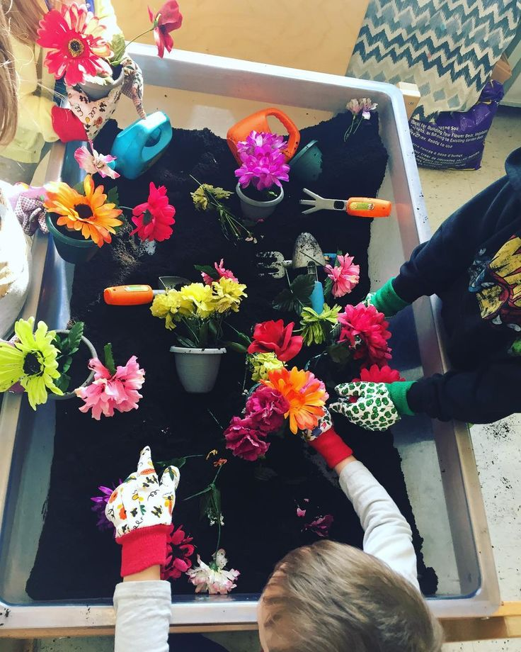 """81 Likes, 7 Comments - Laura King (@kindergartenteachertired) on Instagram: """"Our own sensory bin garden! 👩🏽🌾👨🏻🌾 The kids are having a blast playing in this sensory bin with…"""""""
