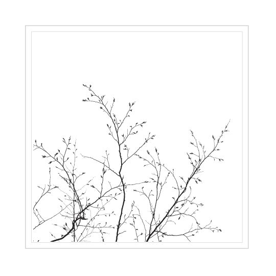 See our range of framed prints in 4 sizes and in black and white frames