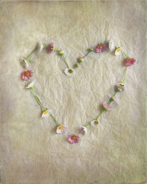 Love+Blossoms++Photography+Photograph++Love+by+gildinglilies,+$20.00. CA