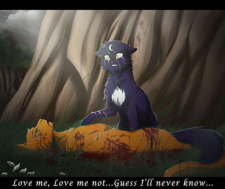Warriors Into The Wild Online: Love Me Not... By RiverSpirit456.deviantart.com On