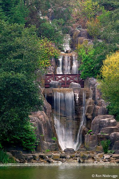 Huntington Falls at Stow Lake, Golden Gate Park, San Francisco, California. Right next to SF State