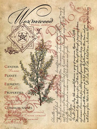Wormwood page ~ The Cackling Cauldron BOS