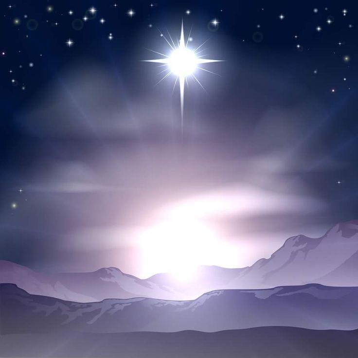 27 Best Estrela De Bel 233 M Star Of Bethlehem Images On