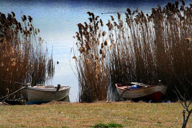 Λίμνη Βόλβη | Λίμνες | Φύση | Ν. Θεσσαλονίκης | Περιοχές | WonderGreece.gr