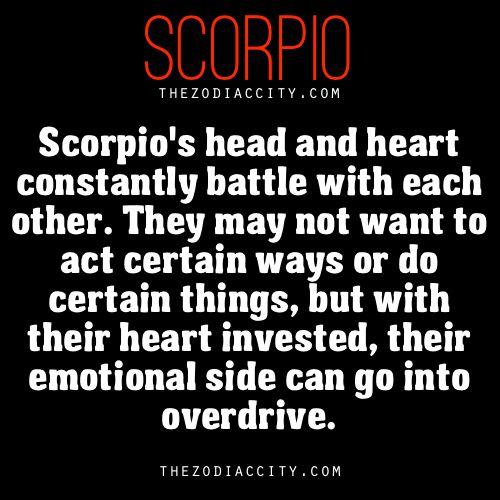 It used to be this way for me, but now, since YBL, I know it is my heart to trust...if my head ruled my life, I hate to think where I'd be, probs alone