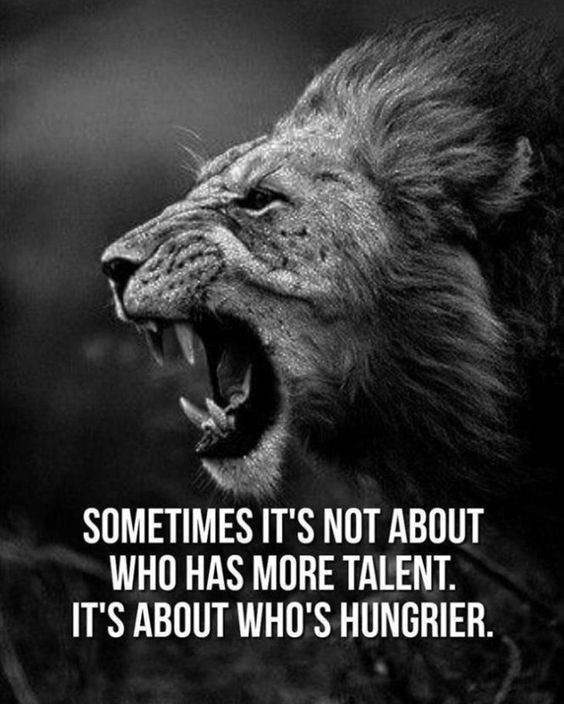 20 Motivational Quotes Introduced To You By Massive And Highly effective Cats