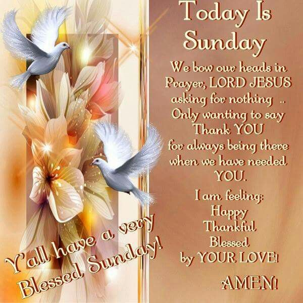 Sunday Night Football Quotes: 4794 Best Images About ༺♥༻Daily Blessings༺♥༻ On Pinterest