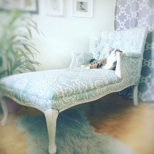 How beautiful is this chair that was reupholstered for me by Berts Furniture Redesign! FB link in comments! Legs have been painted in Annie Sloan old white.