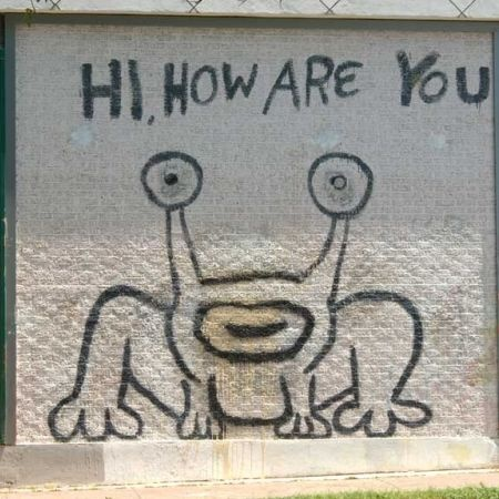 Hi how are you mural austin local artist daniel johnston for Austin frog mural