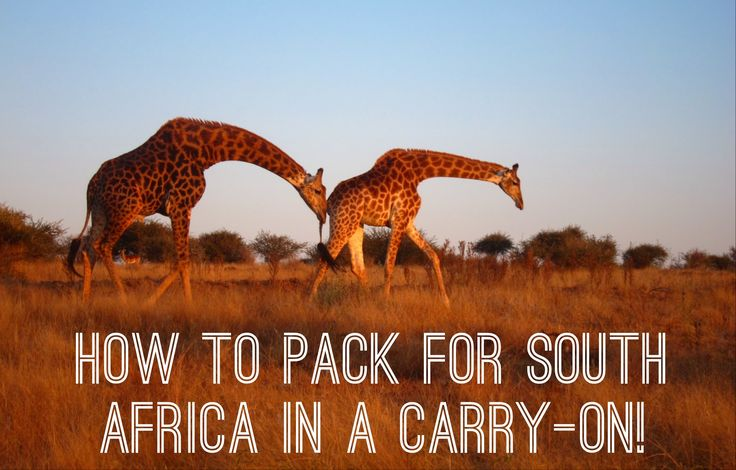 how to pack for a safari...in a carry-on! #capetown #southafrica #kruger