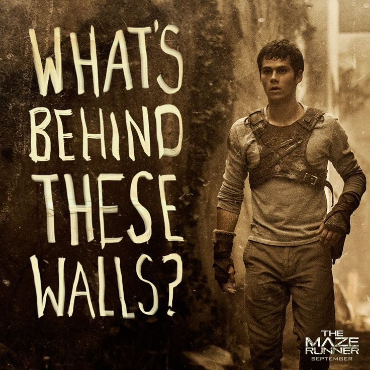 maze runner book report The maze runner: book review the maze runner is part of a three book series by james dashner, an accomplished author who has written many novels.
