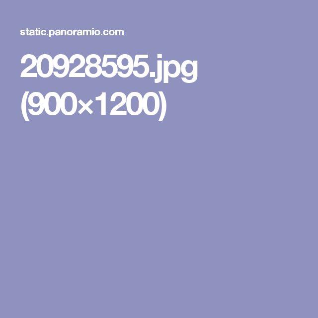 20928595.jpg (900×1200)