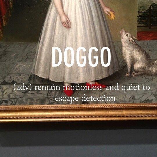 Doggo |ˈdɒɡəʊ| late 19th cent.: of obscure origin; apparently from dog + -o. . . #beautifulword #wordoftheday #doggo #dog #motionless #quiet #art #17thcentury #portrait #deyoungmuseum