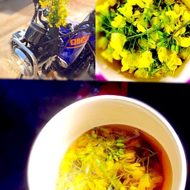 通勤路で摘んだ菜の花を観賞用に花瓶に挿して剪定した残りの穂先をスープに♫  食用には育ち過ぎなんだけど穂先ならまだスープや天ぷらなら楽しめます  旬のものを食べると寿命が10年延びると言われてますよね☆〜(ゝ。∂) - 39件のもぐもぐ - 菜の花スープ by manilalaki