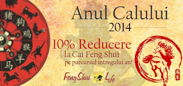 10% Reducere la Cai Feng Shui pe tot parcursul anului 2014!