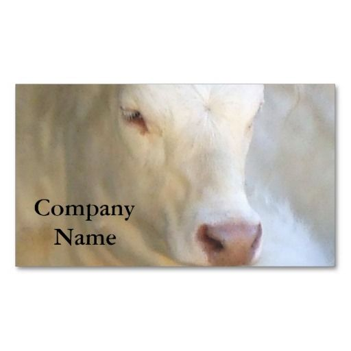 208 best greeting business cards images on pinterest business white cow business cards colourmoves