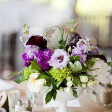 Purple Wedding Flower Photos, Purple Wedding Flower Pictures Page 1 - WeddingWire Mobile