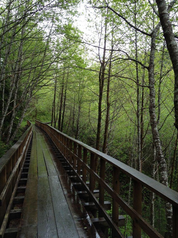 Flume Trail, Juneau Alaska