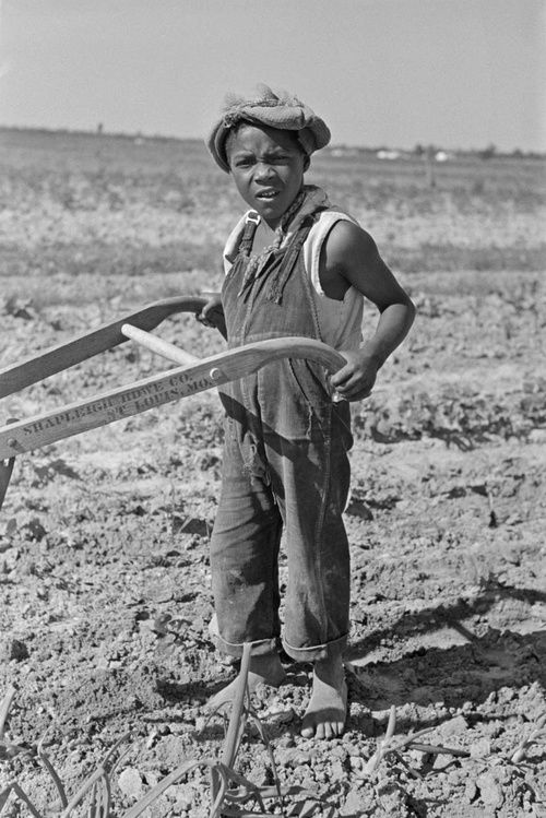HARD KNOCK LIFE Child of sharecropper cultivating cotton, New Madrid County, Missouri. 1938