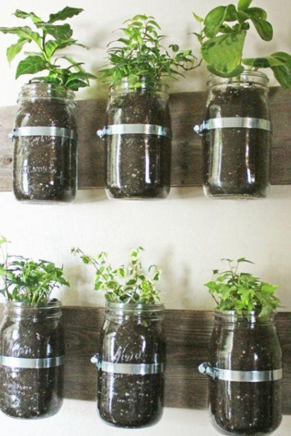 Clever way to grow herbs! Mason Jar Storage Shelf by RockPaperSawzall on Etsy, $25.00