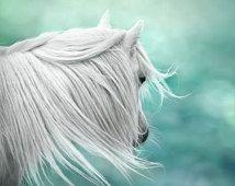 Art fantastique, photo de cheval surréaliste, magique, l'art de la pépinière, aqua de menthe, teal, filles mur décor, vert,