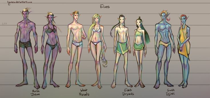 Fantasy Races: [2/4] Elves by Tyshea male and female elf half-elf race player character npc chart | Create your own roleplaying game material w/ RPG Bard: www.rpgbard.com | Writing inspiration for Dungeons and Dragons DND D&D Pathfinder PFRPG Warhammer 40k Star Wars Shadowrun Call of Cthulhu Lord of the Rings LoTR + d20 fantasy science fiction scifi horror design | Not Trusty Sword art: click artwork for source