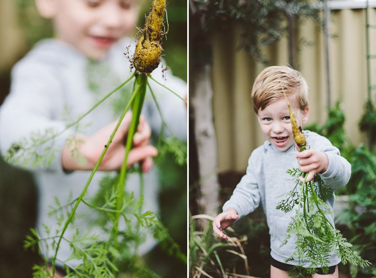 Stealing CarrotsStealing Carrots - Krystle Ricci Photographer, Perth Western Australia
