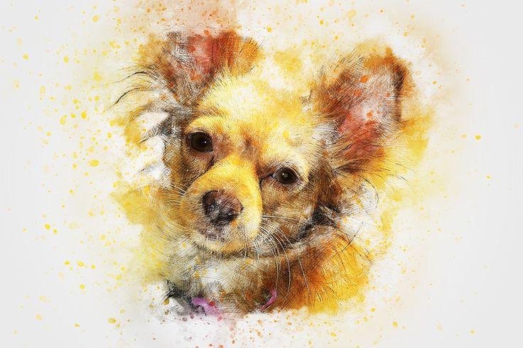 Anjing, Hewan, Seni, Abstrak, Cat Air, Model Tahun