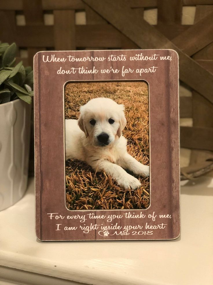 Pet Sympathy Gift Dog Memorial Gift Personalized Gift For