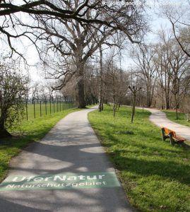 Naturschutz-Hinweis auf dem Radweg beim Naturschutzgebiet am Bodensee-Ufer