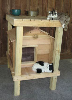 Diy cat house for strays