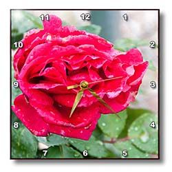 A red rose blossom shot up close in accented sedges Wall Clock