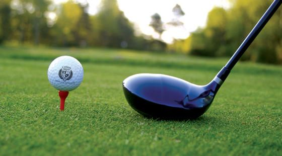 Select the best golf club
