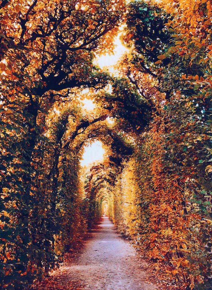 осень в разных странах мира фото данной расцветки, сожалению