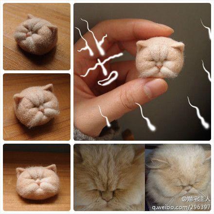 needle felting exotic shorthair cat!!!!
