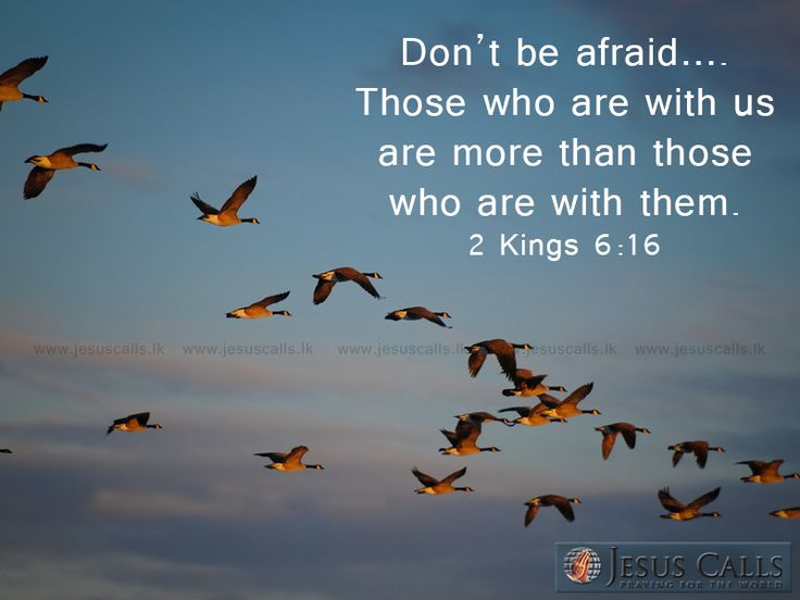 Don't be afraid…. Those who are with us are more than those who are with them. 2 Kings 6:16