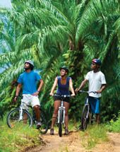 Cycling in PNG is a great addition to your holiday, allowing you to relax, have fun and set your own pace.  https://gudmundurfridriksson.wordpress.com/2016/03/03/pedalling-png/