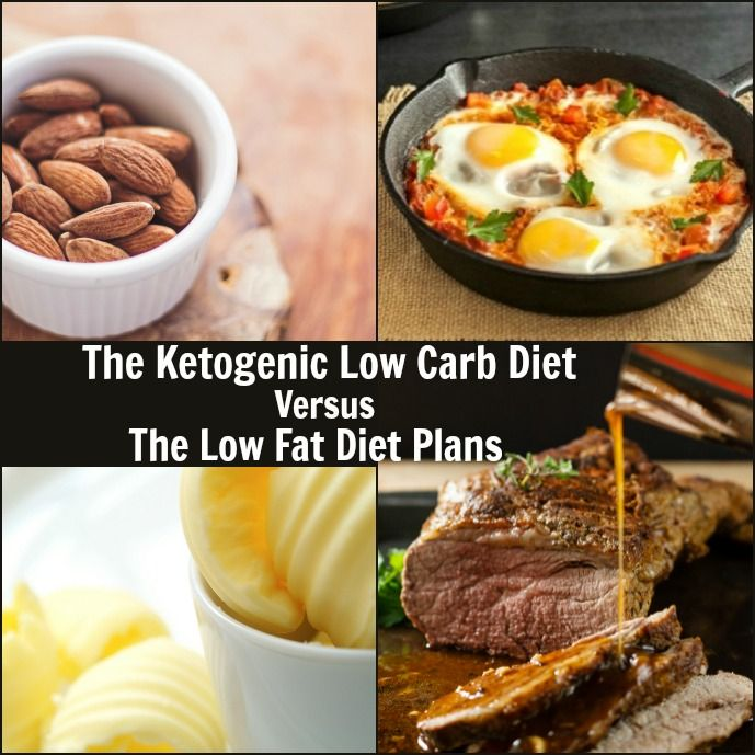 comparing low carbohydrate diets and low fat Reduced calorie, low fat diet is currently recommended diet for overweight and obese adults prior data suggest that low carbohydrate diets may also be a viable option for those who are overweight and obese data were extracted and prepared for analysis using double data entry prior to.
