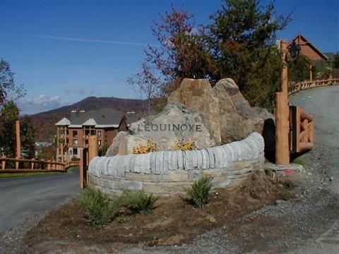 Condo à vendre à Mont-Tremblant - 469000 $