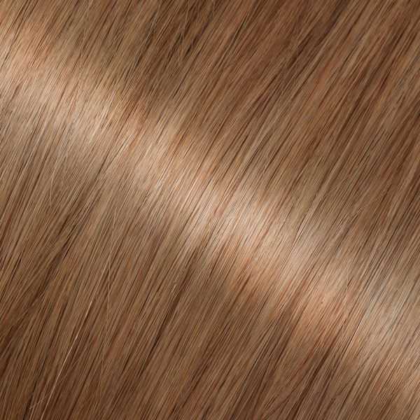 Best 25+ Butterscotch hair color ideas on Pinterest What is ash - sample hair color chart