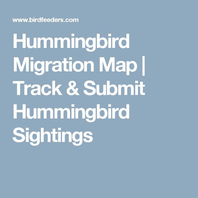 Hummingbird Migration Map | Track & Submit Hummingbird Sightings …